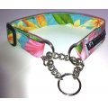 Slip-Over Training Collar with Chain Correction Loop